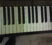 french polished piano whitening keys